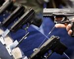 枪支管制投票