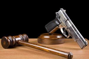 Gun Liability Poll