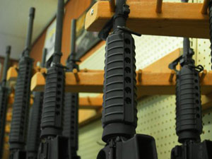 Gun Control Umfrage