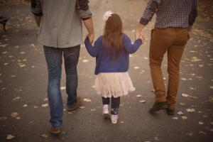 LGBT Adoption Rights Poll