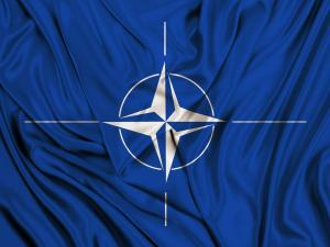 NATO Poll
