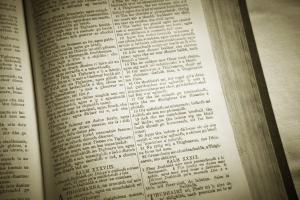 Sondaggio del curriculum della lingua irlandese
