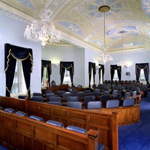 Seanad Éireann Electoral System Poll